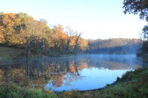 langwood-pond